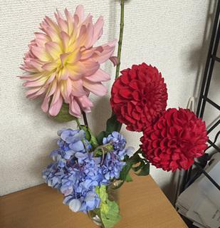 IMG_0287.jpg